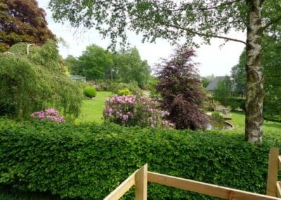 Spring lyndhurst__large