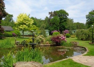 Spring pond__large