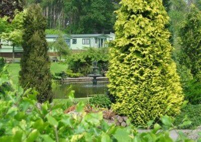 evergreen__large
