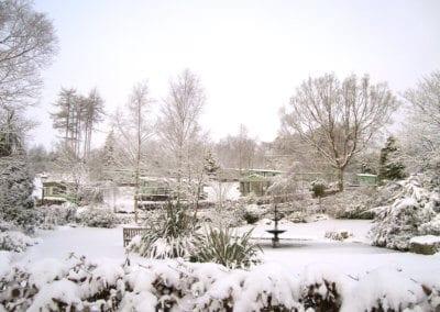 winter nov WEB 1