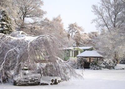 winter nov WEB 4