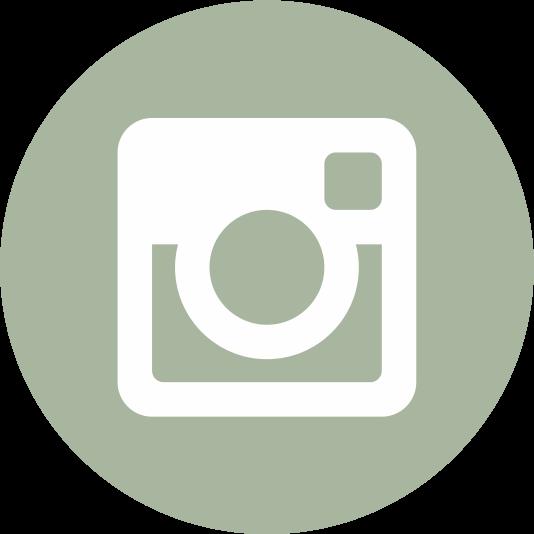 WF Instagram Icon