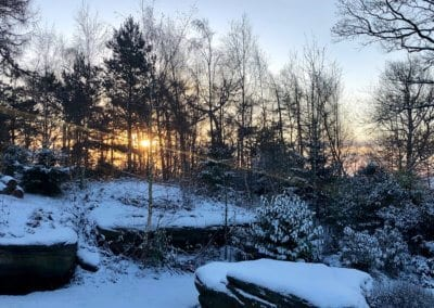 Sunrise on a snowy morning
